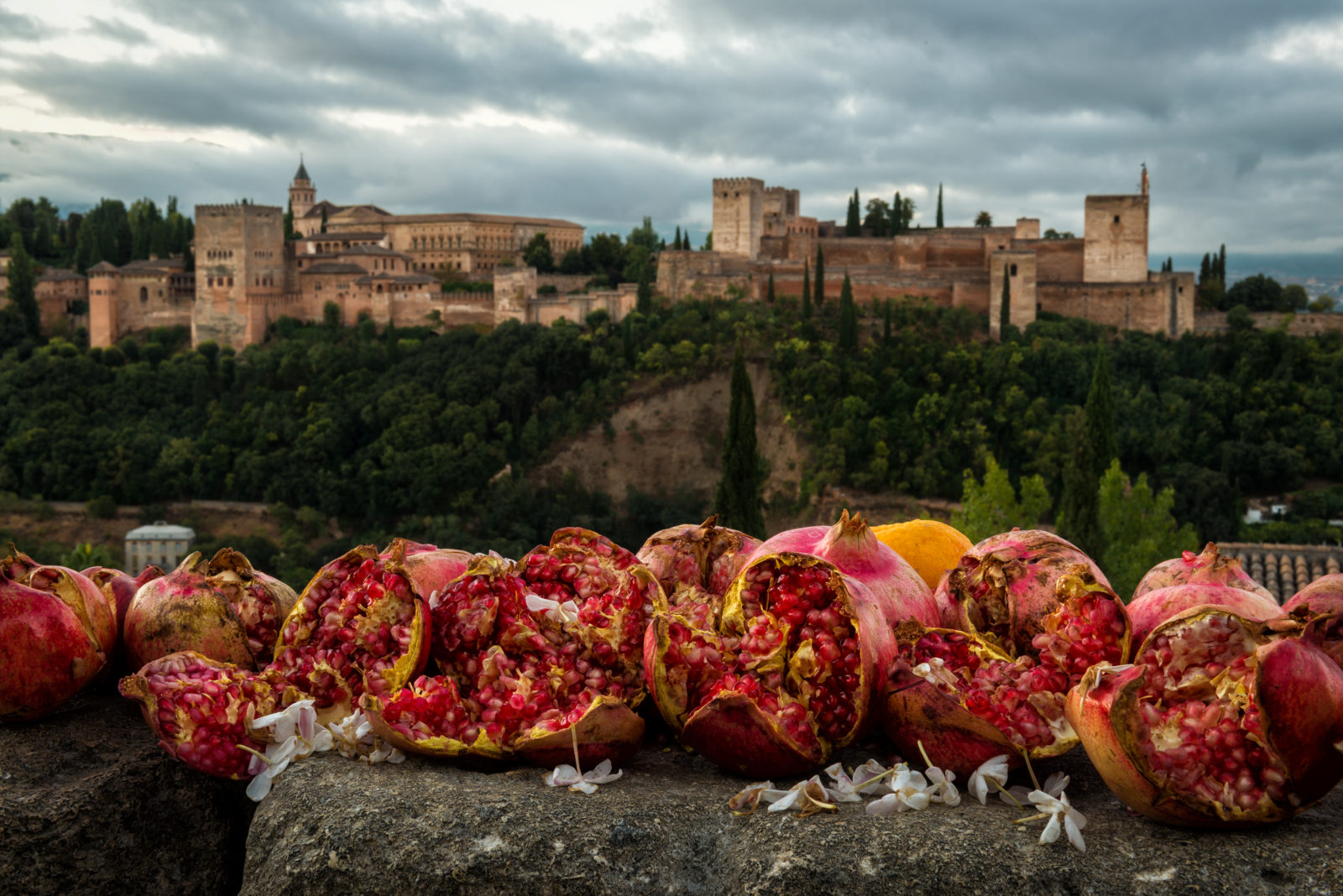 Alhambra and Pomegranate