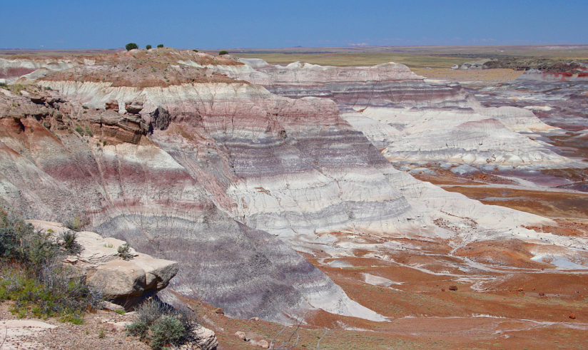 Painted Desert/Petrified Forest