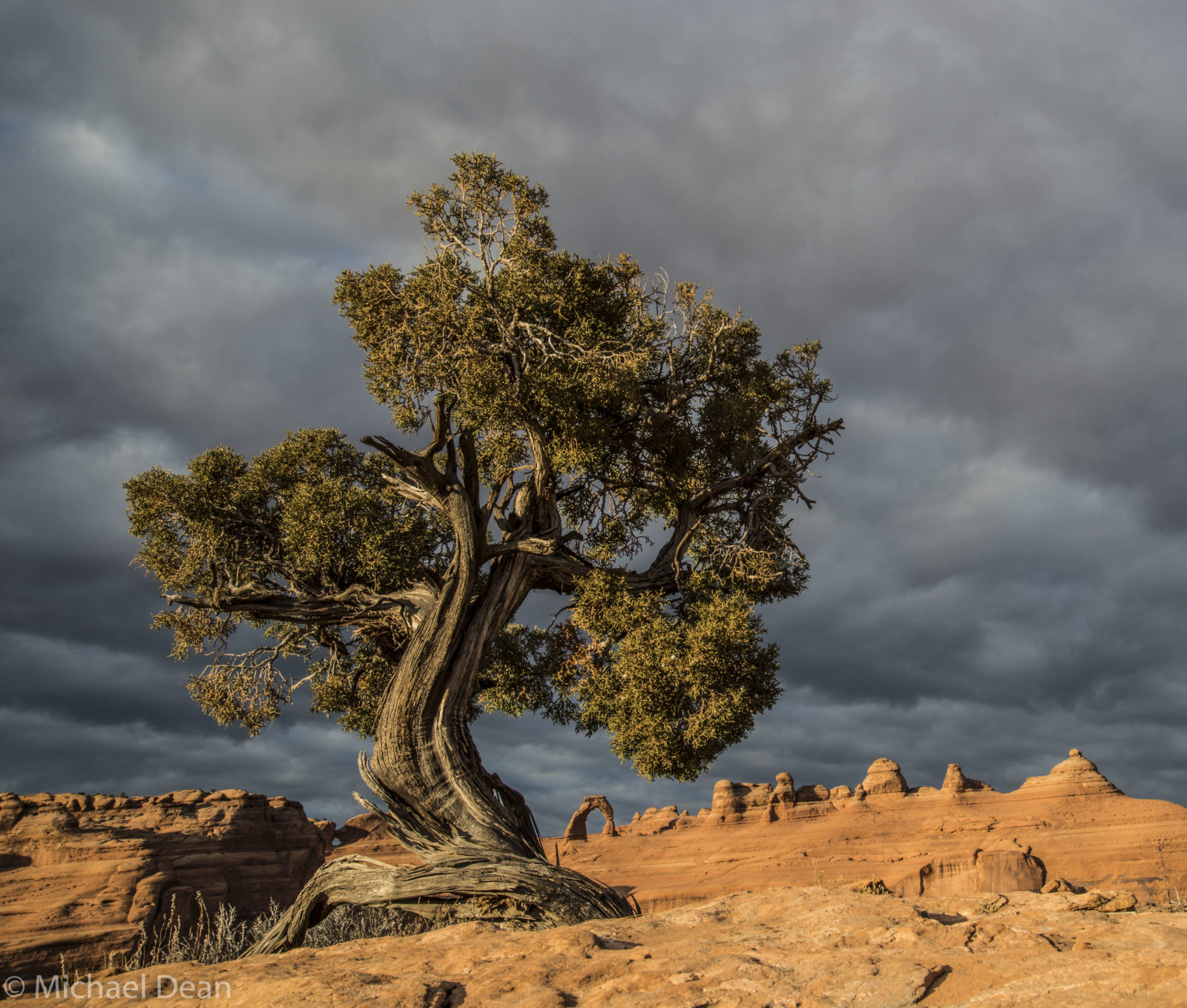 Delicate Arch Revisited