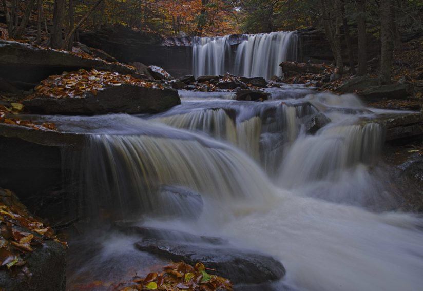 Cascading Water and Leaves