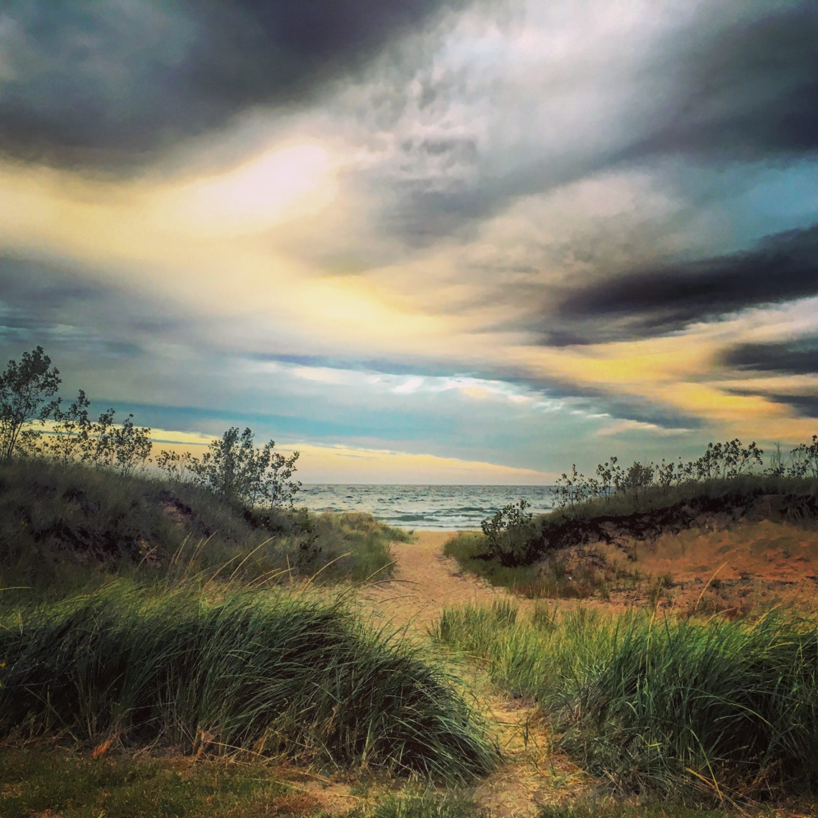 Moody morning in the dunes