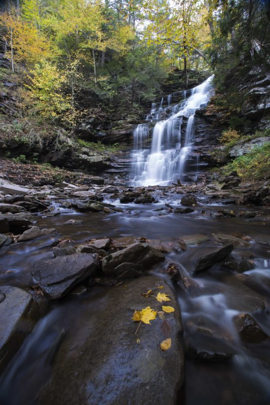 Waterfall Delight at Ricketts Glen