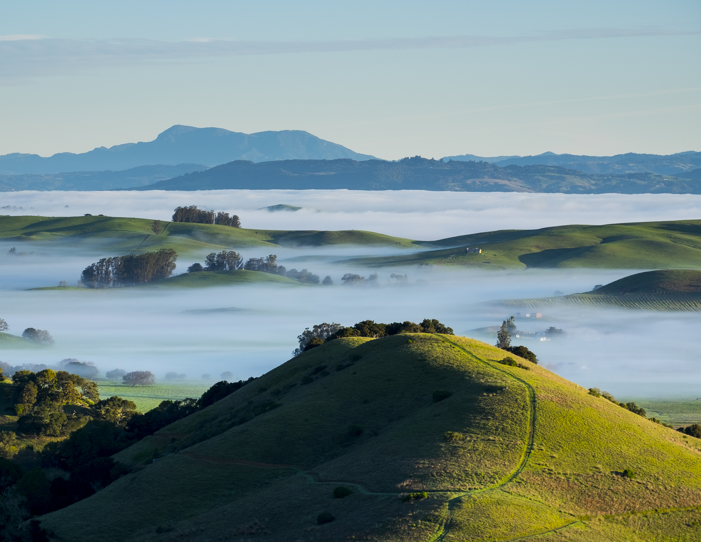 Hills of Northern California