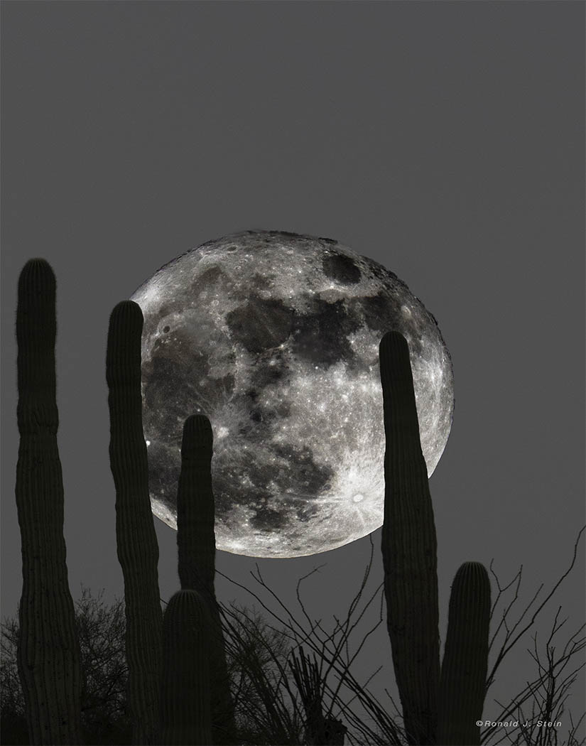 The Largest Full Moon
