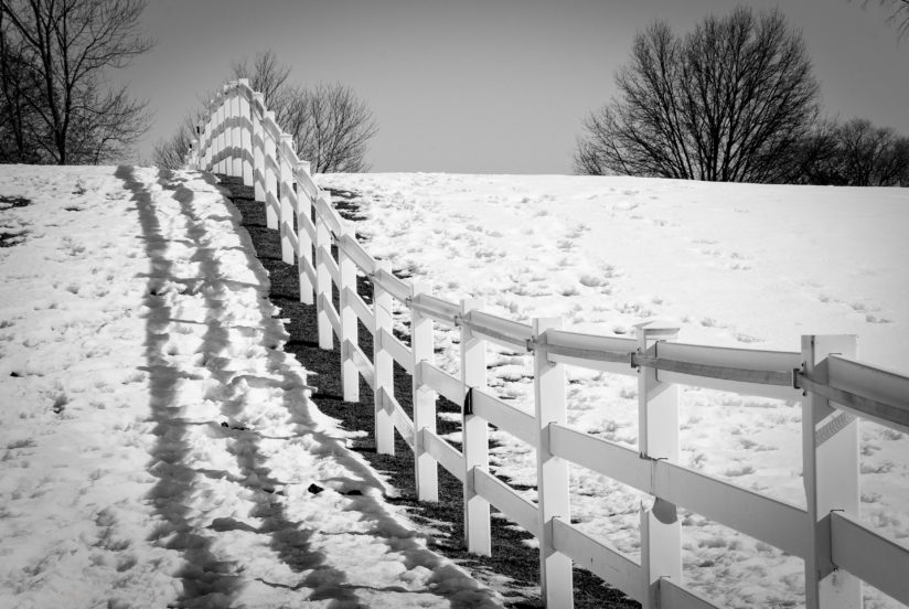Endless Fences