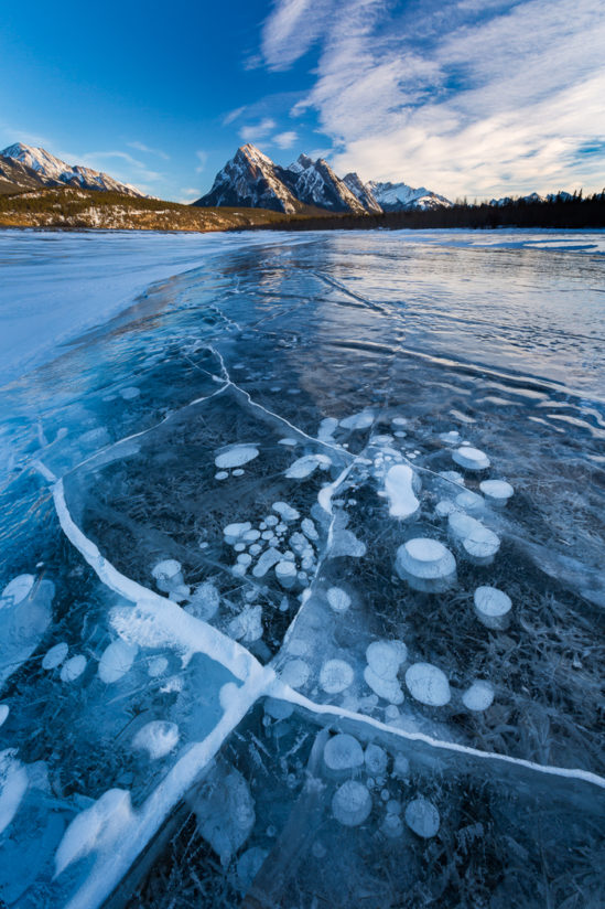 Ice Bubbles – Abraham Lake