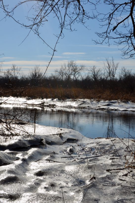 Icy Riverbanks