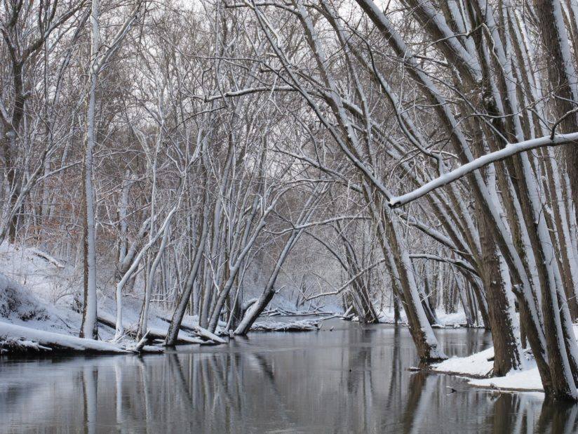 Chilly River Travel