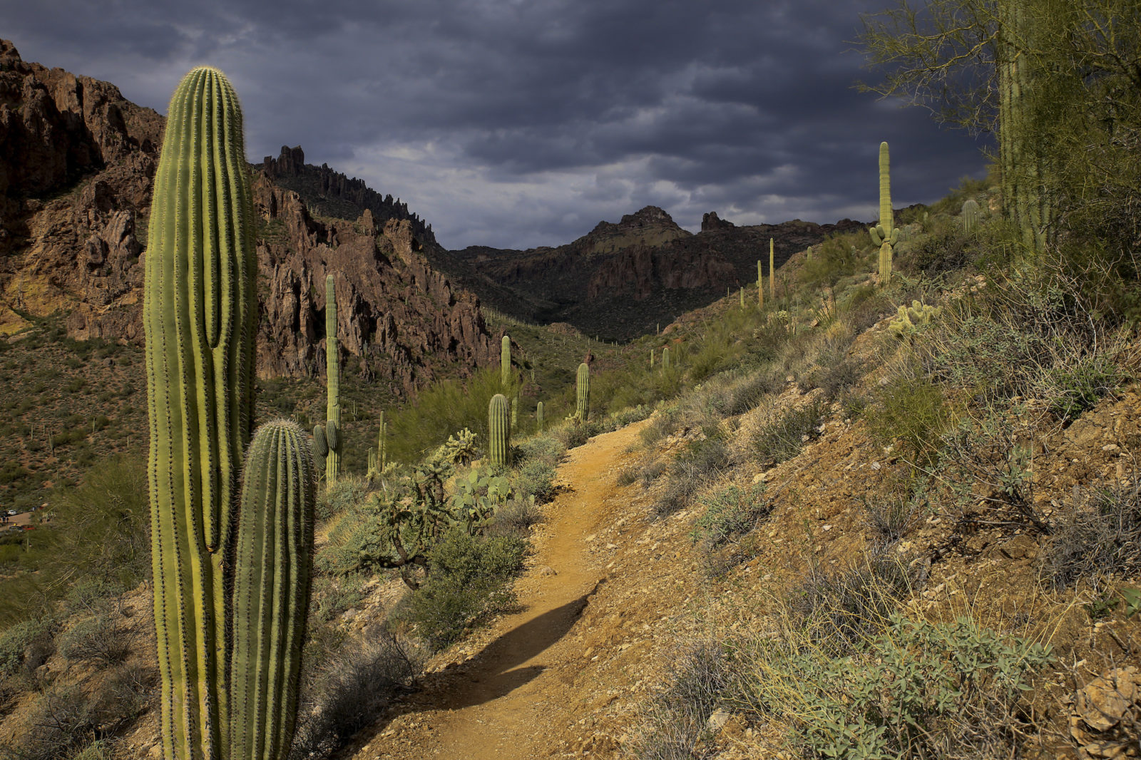 Superstition Mountain Hike