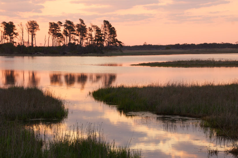 Chincoteague Sunrise