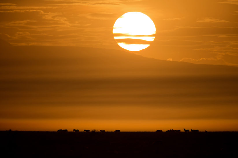 Ndutu Sunrise over the Ngorongoro Rim