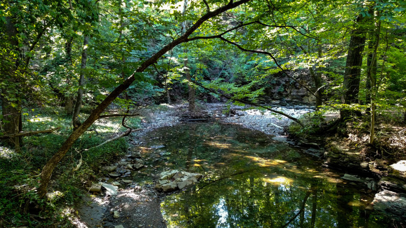 Adena Brook in Overbrook Ravine