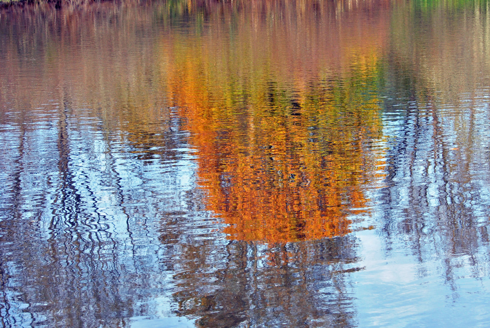 Colorful reflections on the river