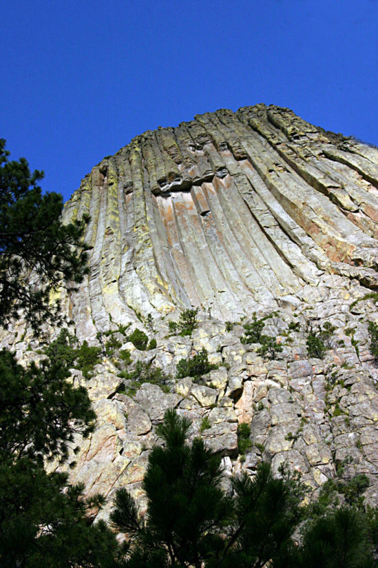 Looking up at DevilsTower