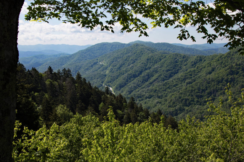 New Found Gap Road View of the Great Smoky Mountains