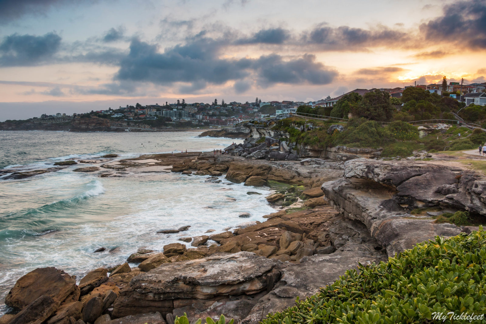 A Coastal walk in Sydney