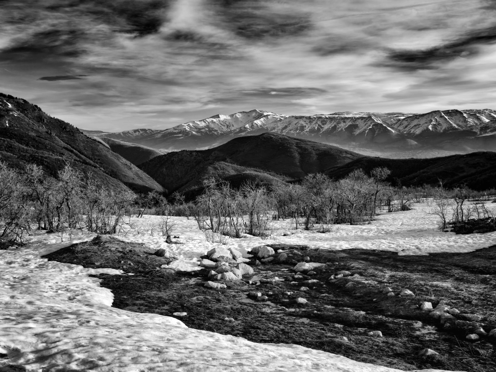 Wasatch in mono
