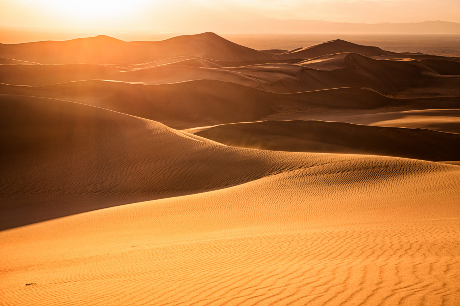 Whispers of Sand