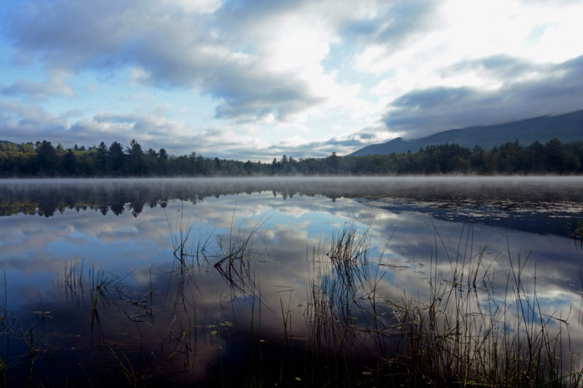 Morning Mist on Mauserts Pond