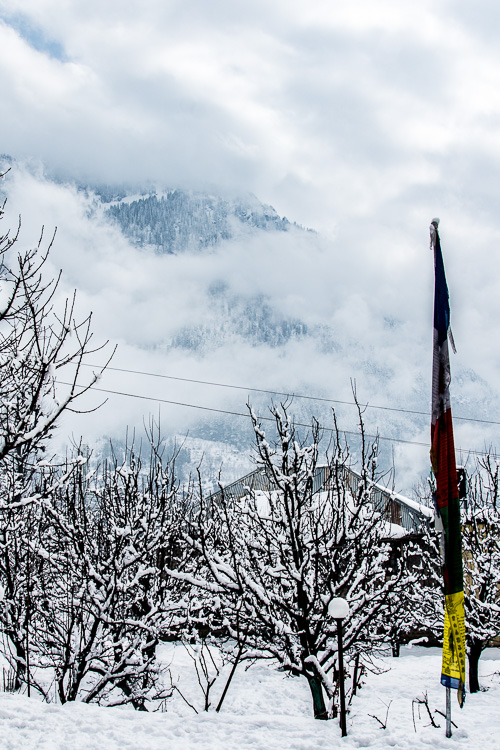 Misty mountains of Manali