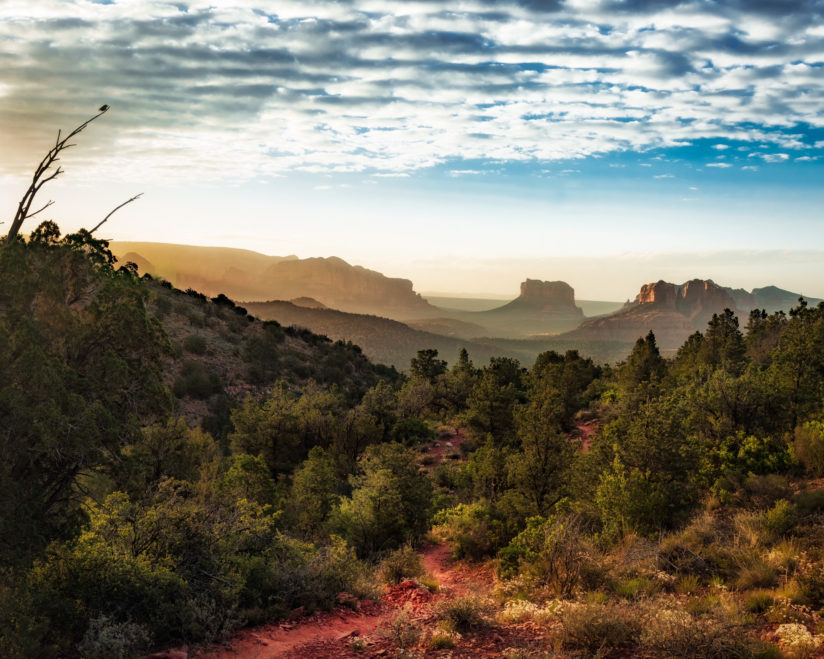 Morning in Sedona