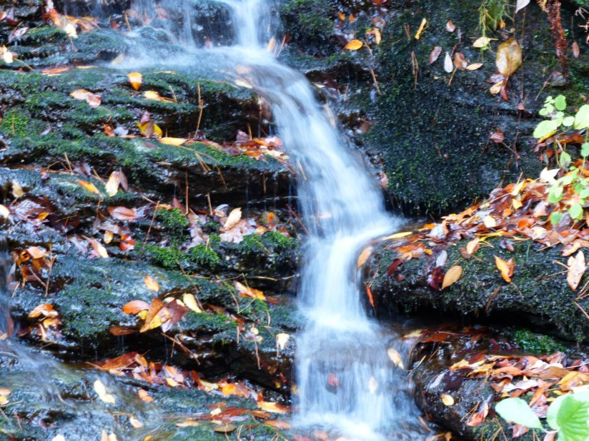 Scenic Mini Waterfall along FS 210