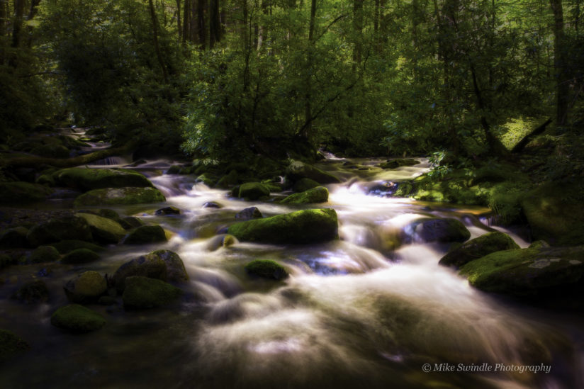 Mountain Stream Convergence