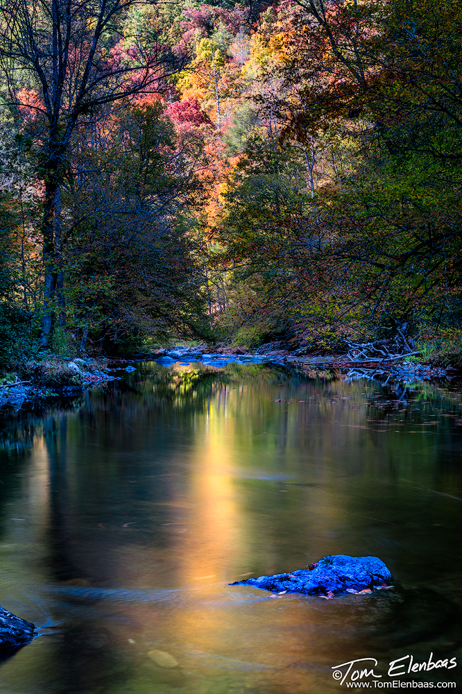 Little River Reflections