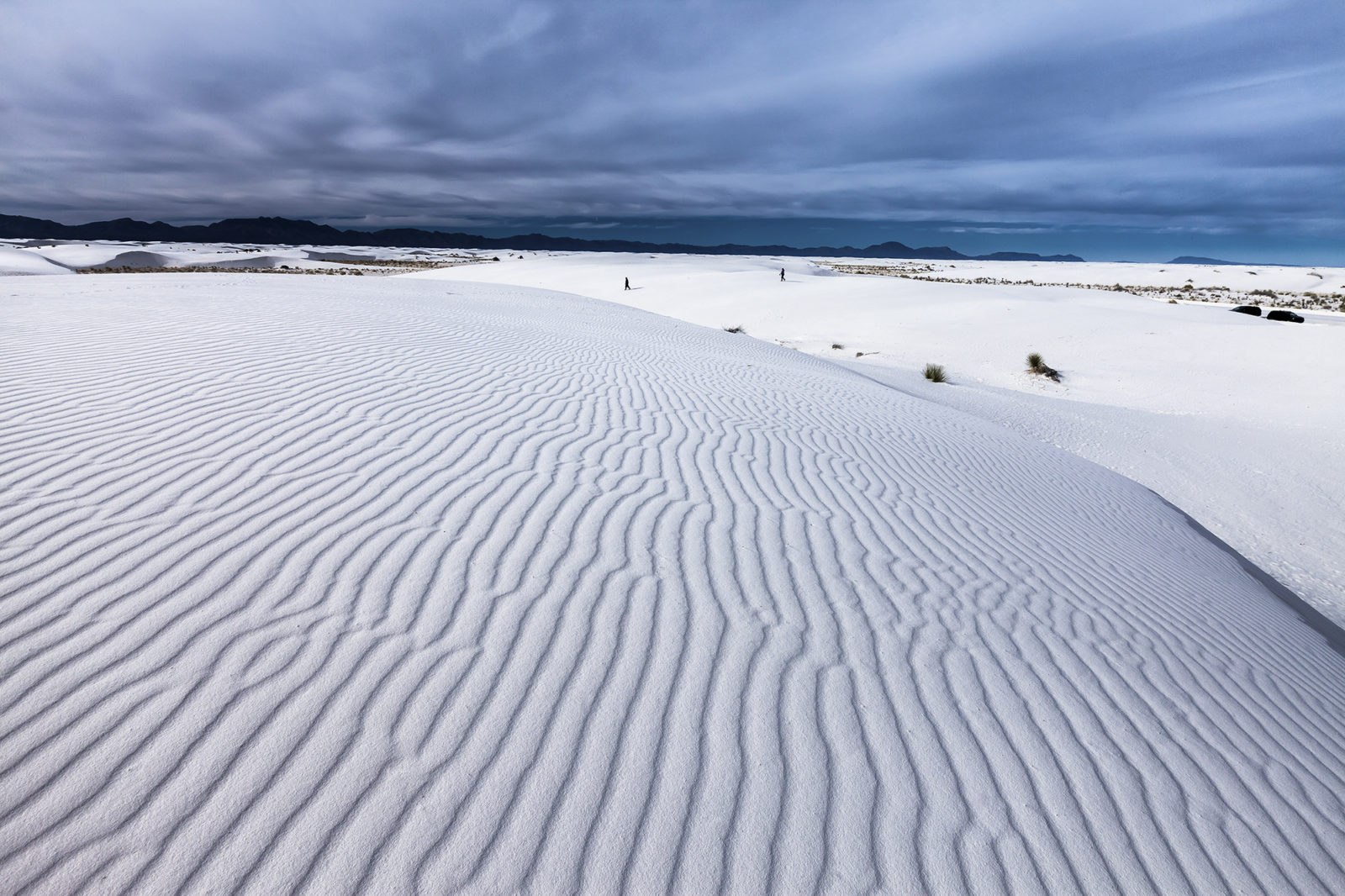 Dreaming of White Sands