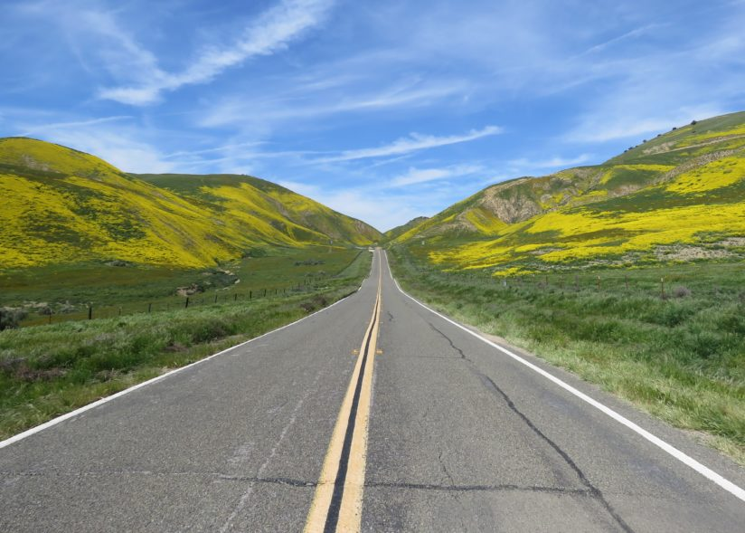 Carrizo Plain Road