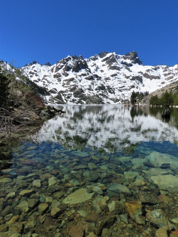 Midday Summer Clarity in a Mountain Lake