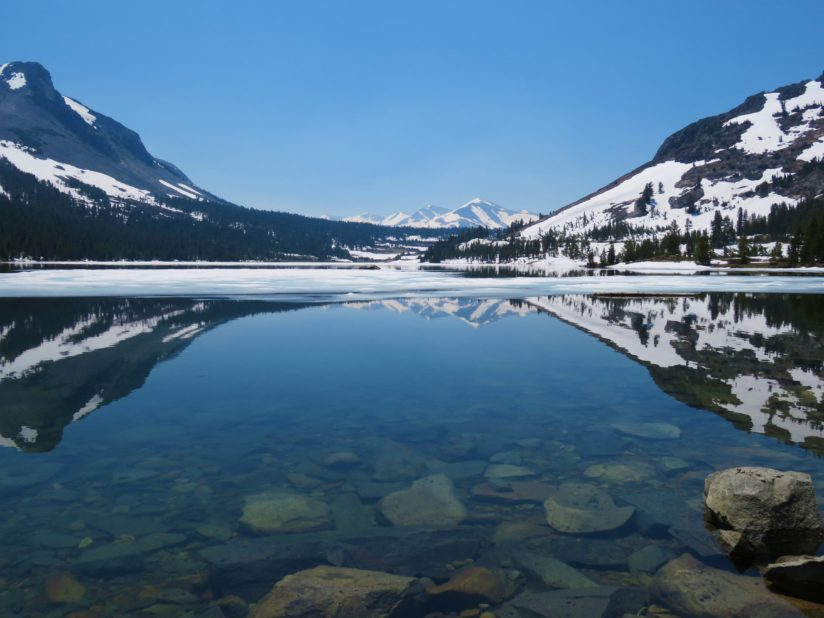 Snowy Summer at Tioga Lake