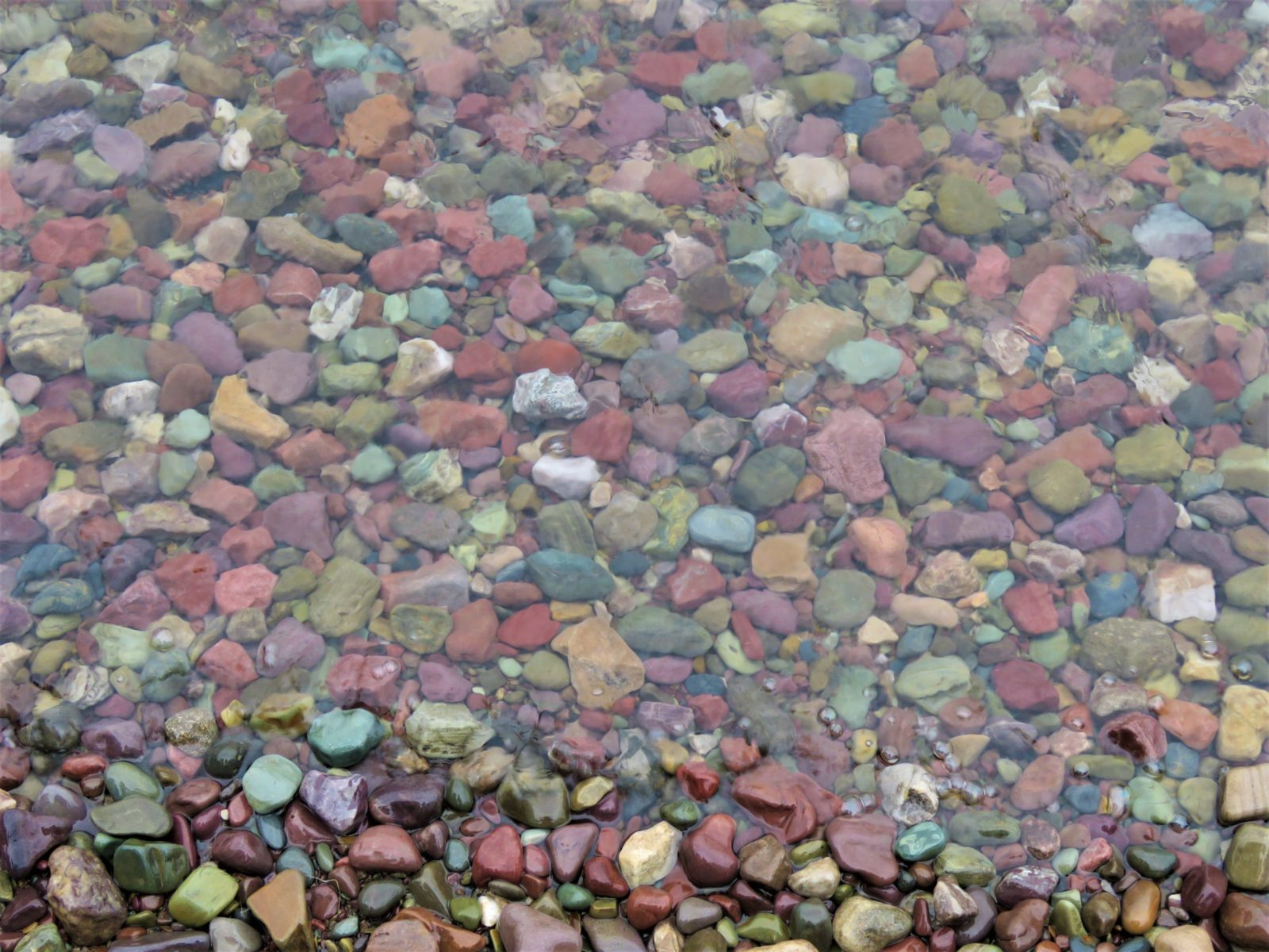 Pebble Shore, Glacier
