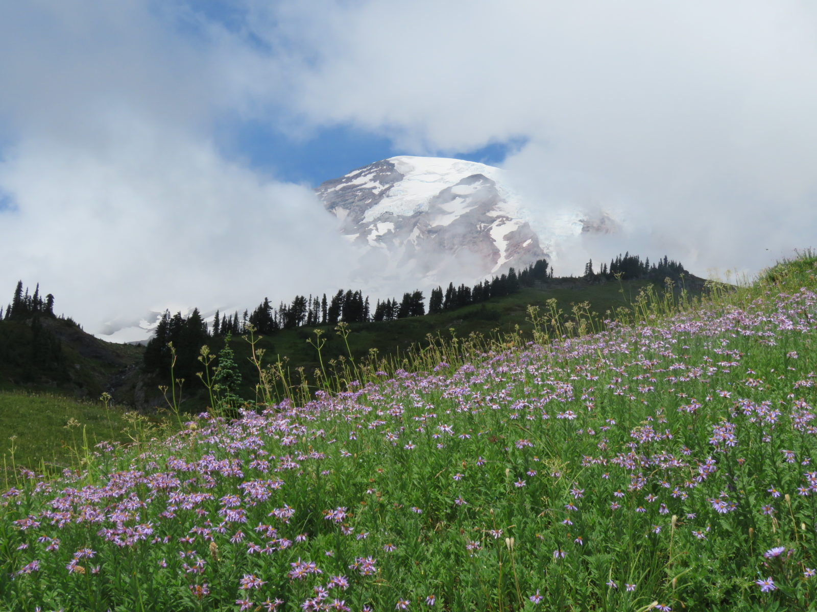 The Heavens Opening in Paradise (Mount Rainier)