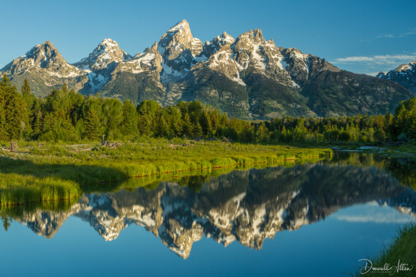 Schwabacher's Landing Morning Reflections