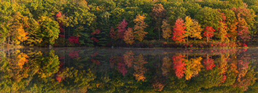 Harriman Fall Splendor…