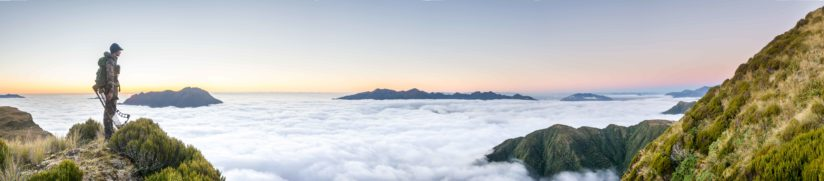 Above The Clouds In Westland , New Zealand
