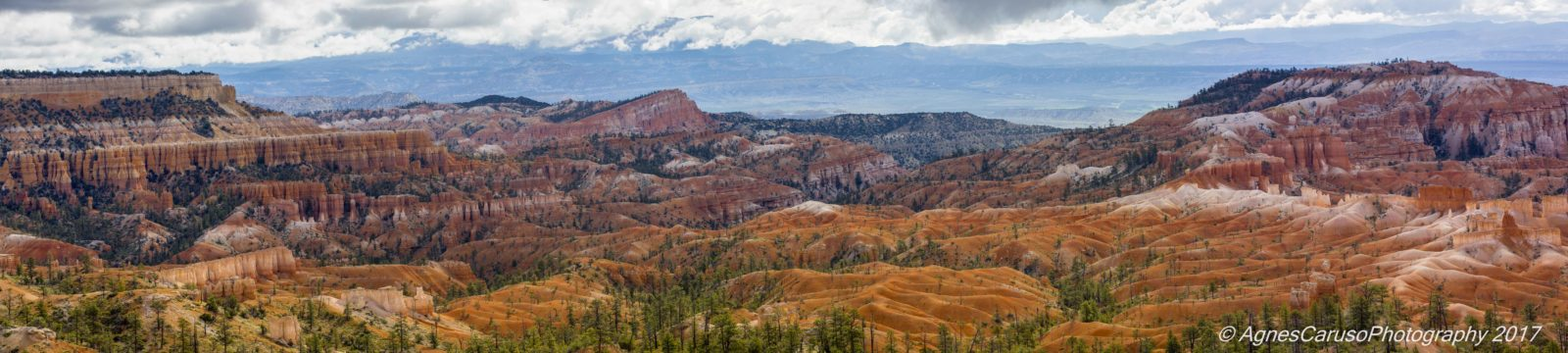 Afternoon in Bryce Canyon