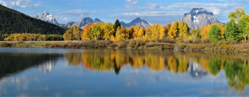 The Quiet Side of Oxbow Bend