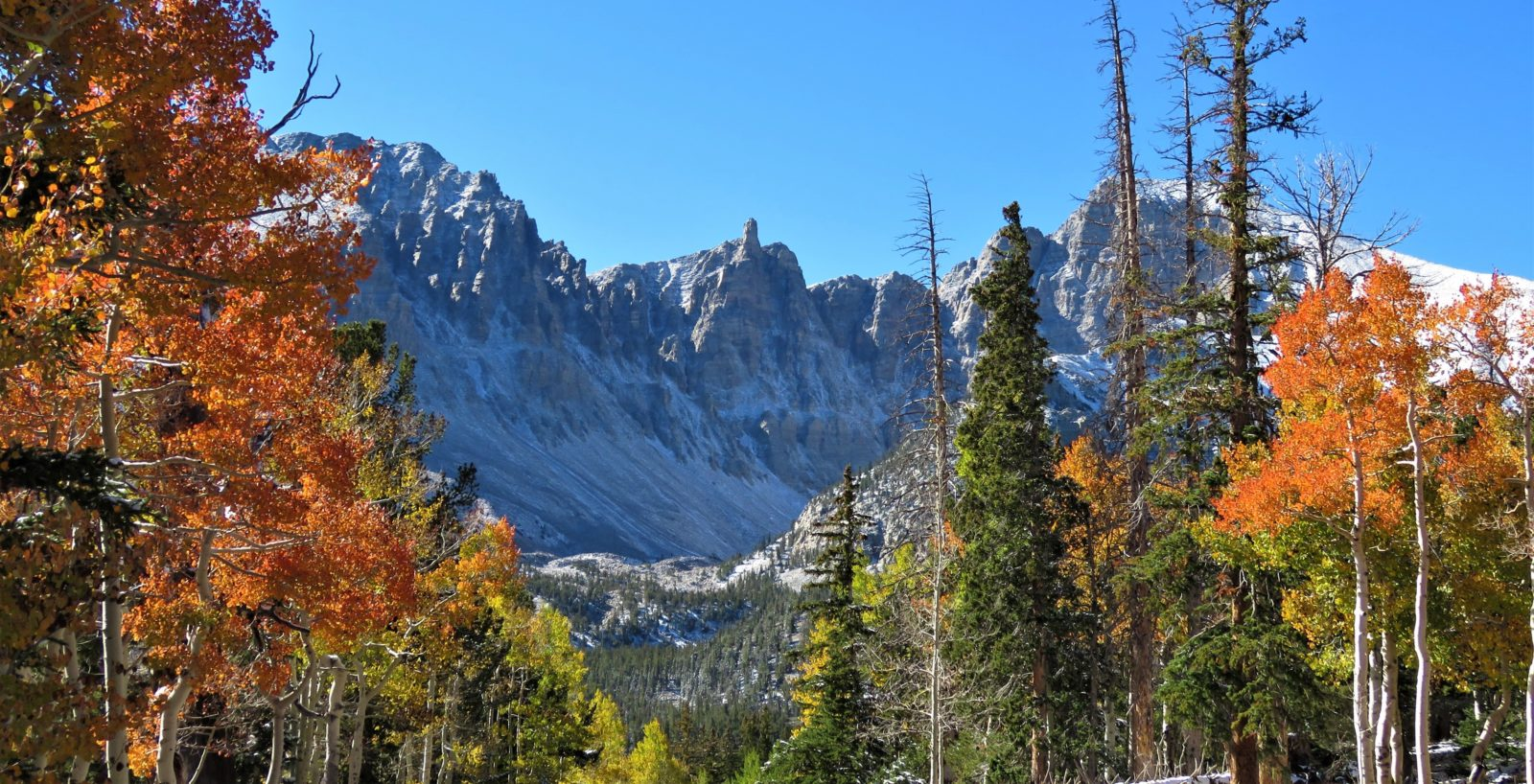 Great Basin Autumn Pano