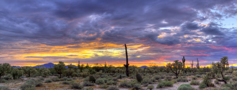 Desert Sunset Panorama