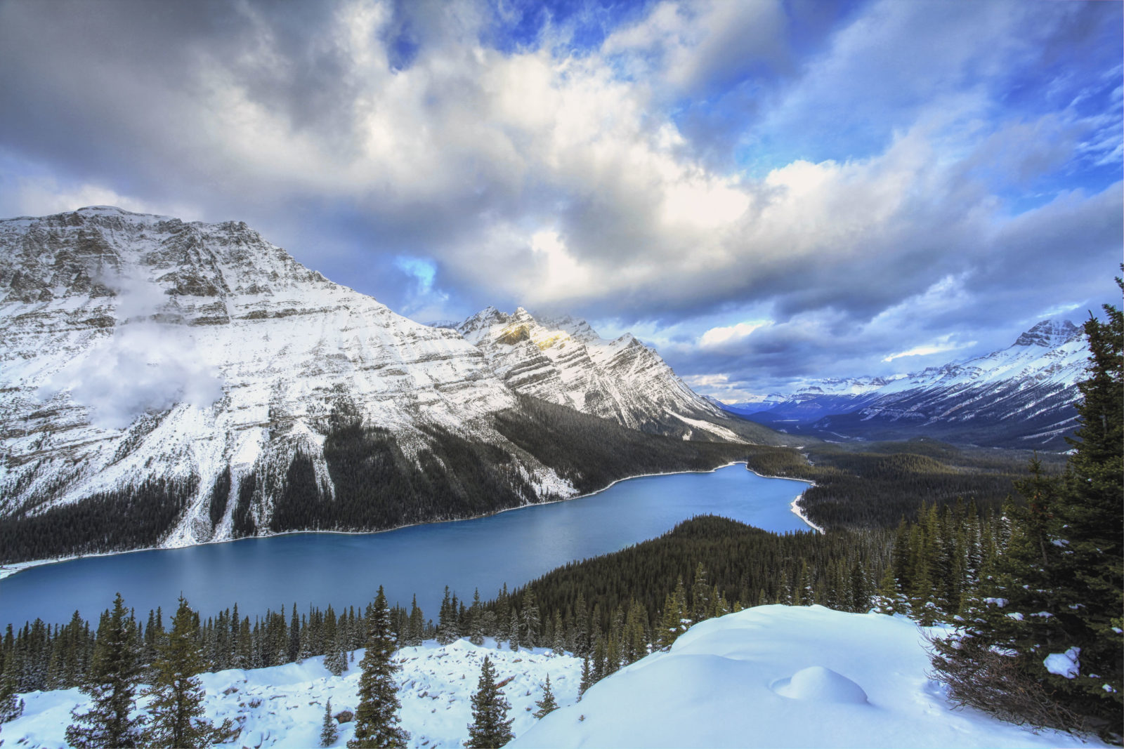 Avalanche above Peyto Lake, Banff National Park