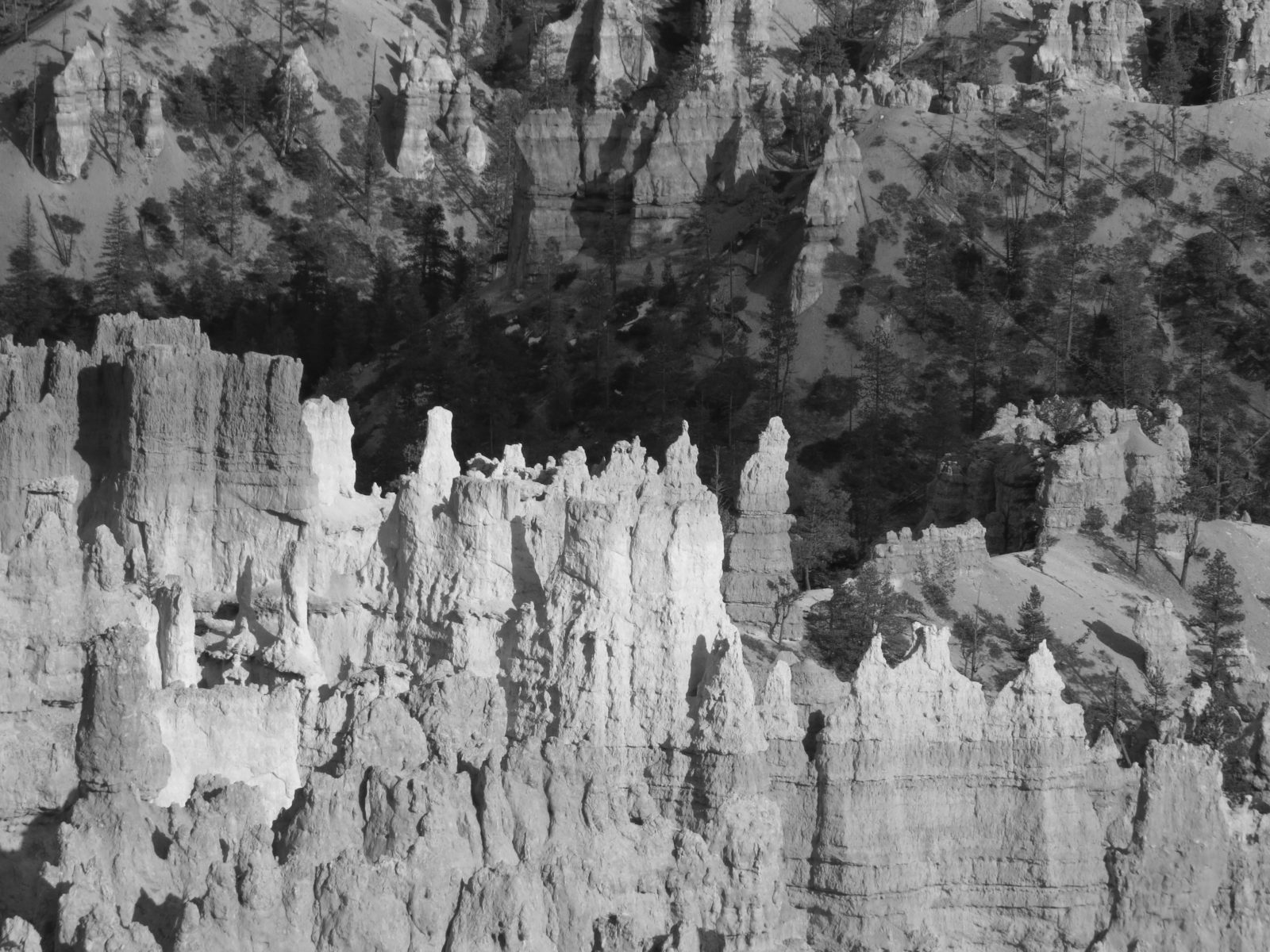 Bryce Canyon Deep Shadow (B&W)