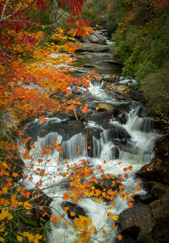 Chattooga Fall