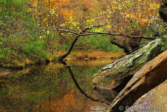 Autumn Serenity on Pickle Creek 2