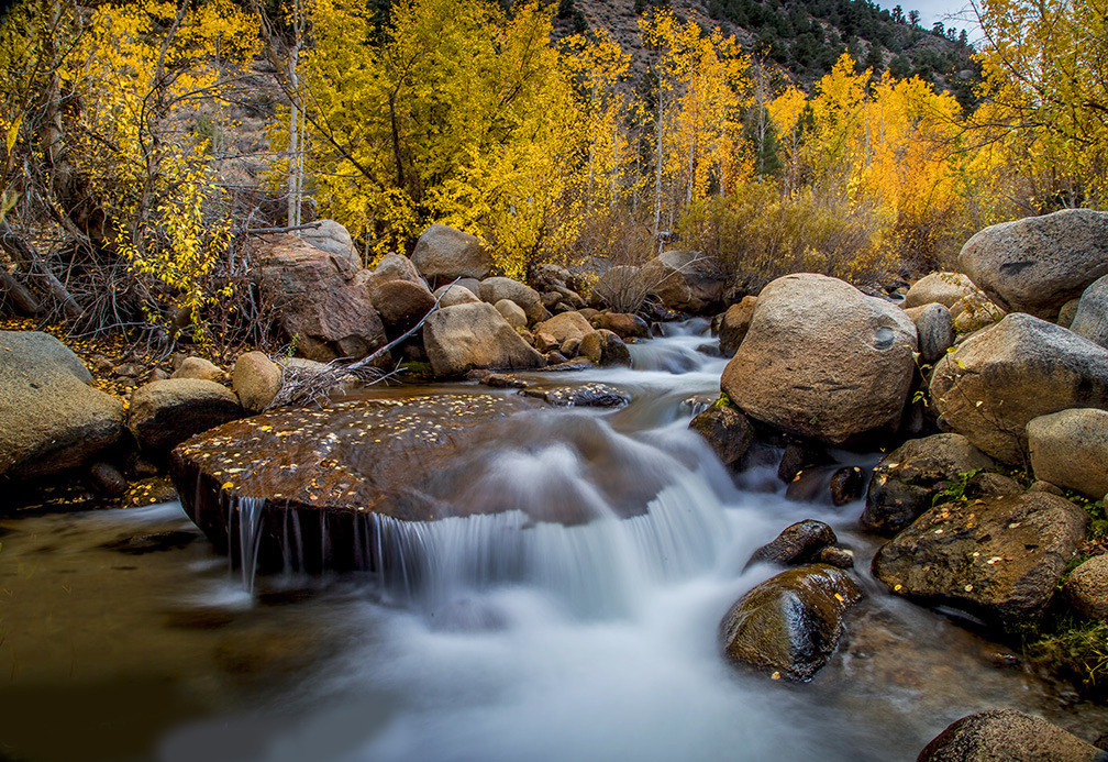 Bishop Creek Autumn