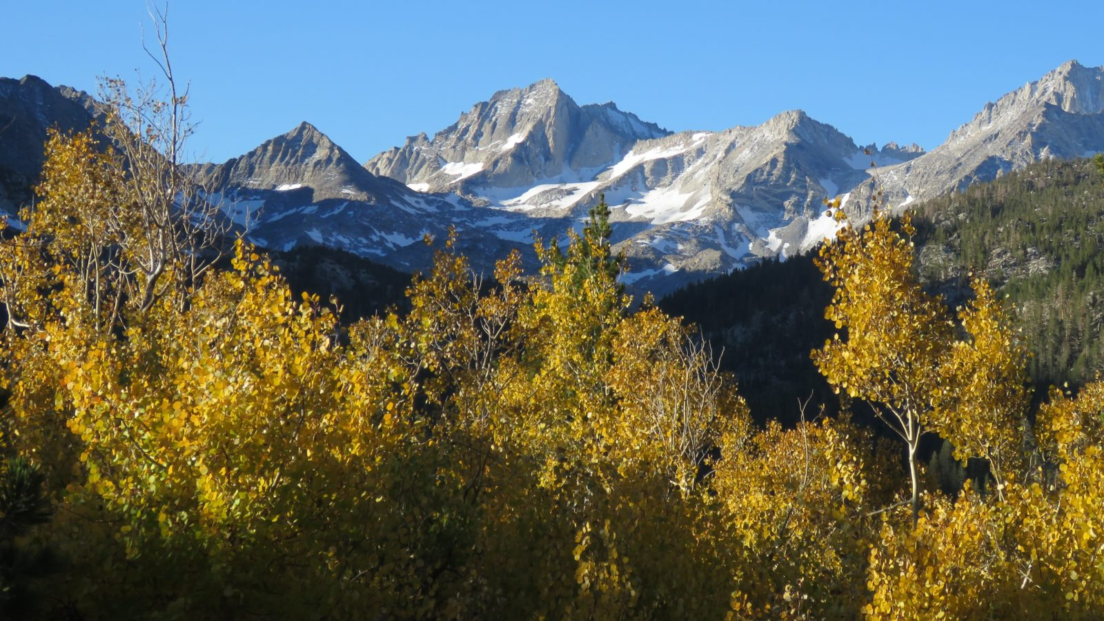 Autumn in John Muir Wilderness