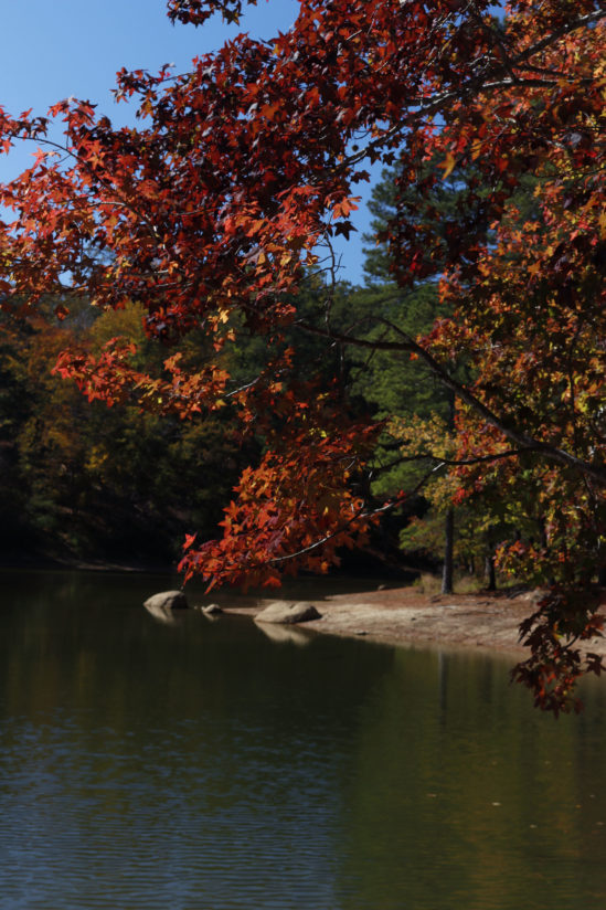 Fall at Red Top Mountain