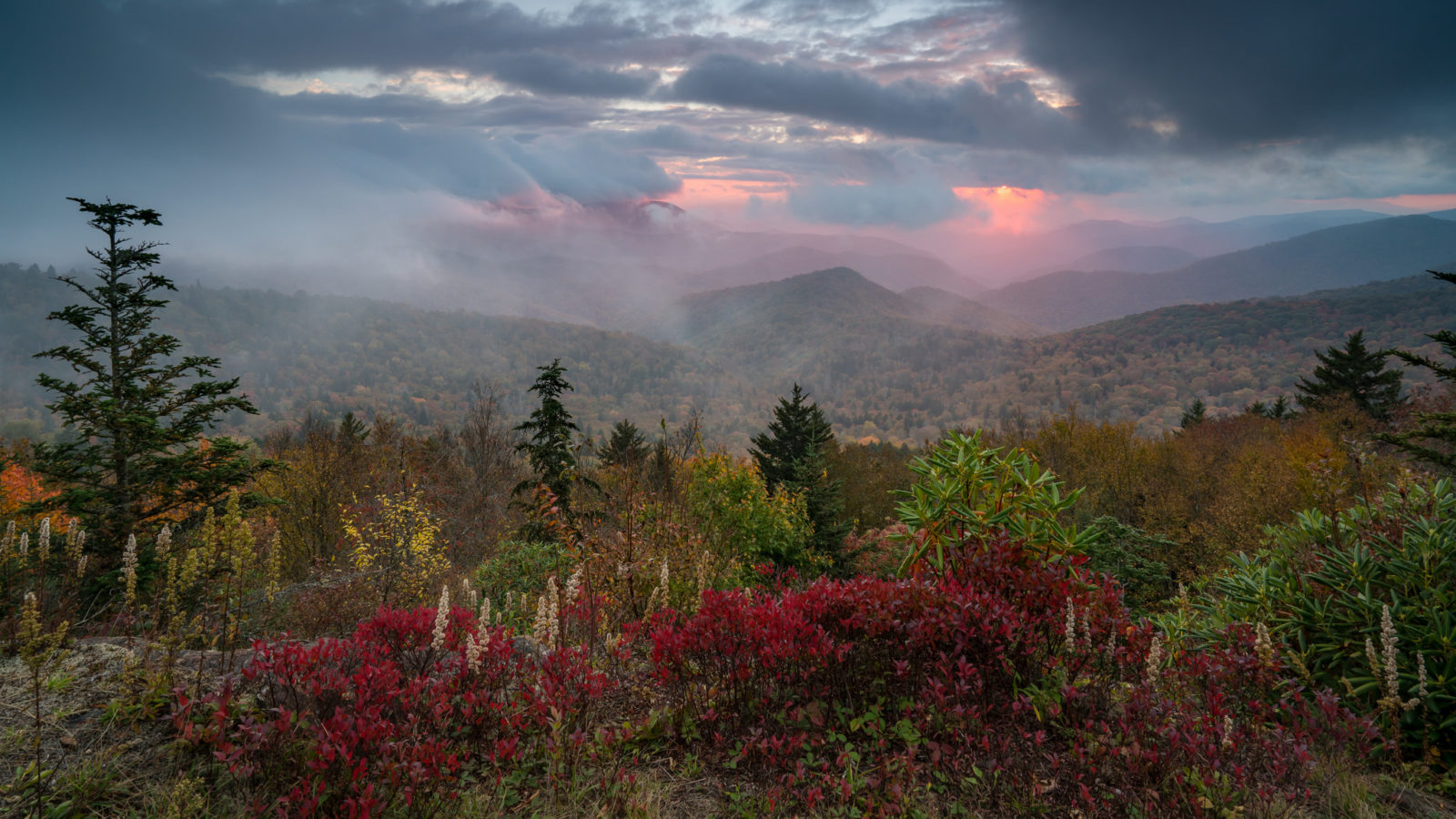 Fall Along the Blue Ridge Parkway