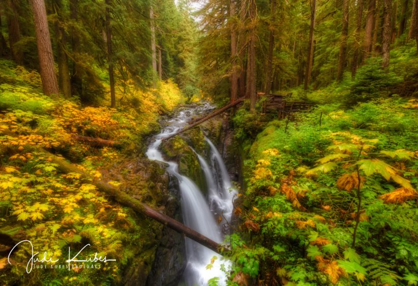 Autumn at Sol Duc
